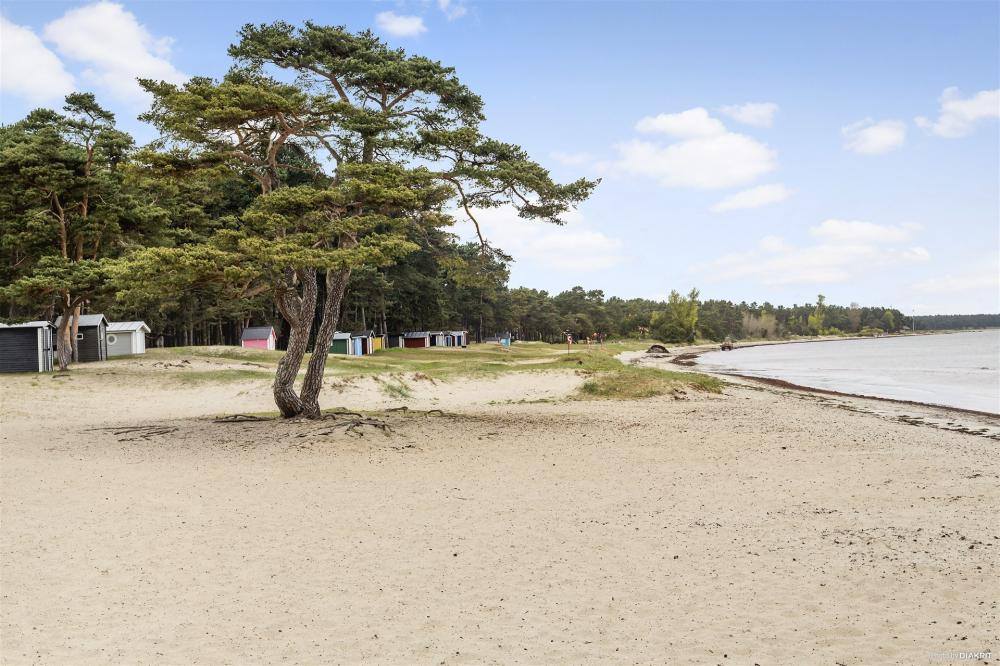 Den vackra stranden vid Täppet